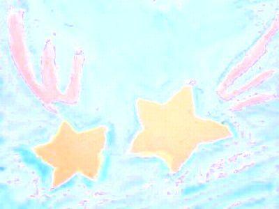 Star_yuyu