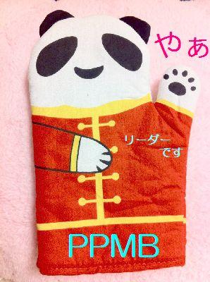Ppmb_3