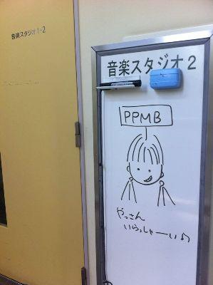 2ppmb